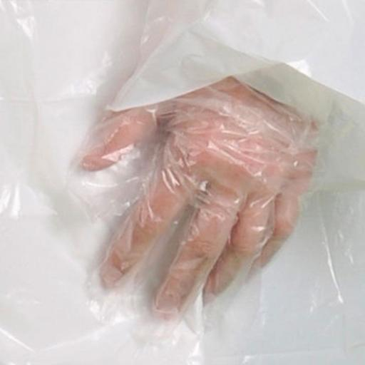 Portwest Disposable PE Glove - Embossed (20000pcs)